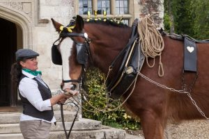 CHL's heavy horses greeted guests as they arrived for the ceremony