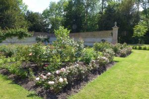 The Rose Garden here at Chawton House Library, planted in 2009 to mark the bicentinary of Jane Austen coming to live in Chawton Village