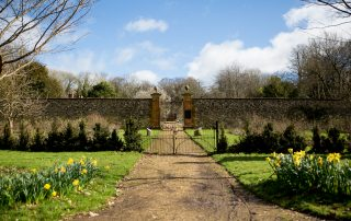 Online Creative Writing Workshop- Creating a Garden