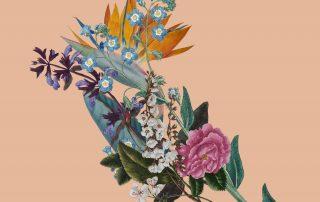 Exhibition: Botanical Women